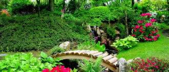Яркий сад