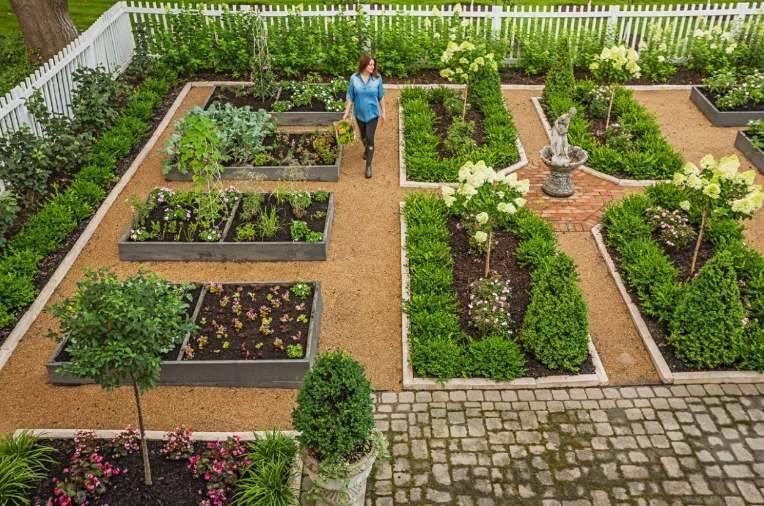 Сад и огород вместе