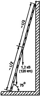Схема испытания приставной лестницы.