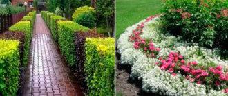 Быстрая и красивая згородь